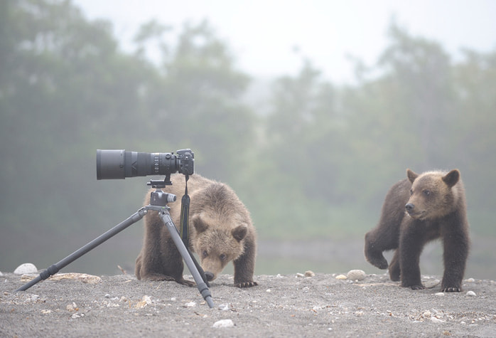 Photograph Amateur photographers. by Igor Shpilenok on 500px