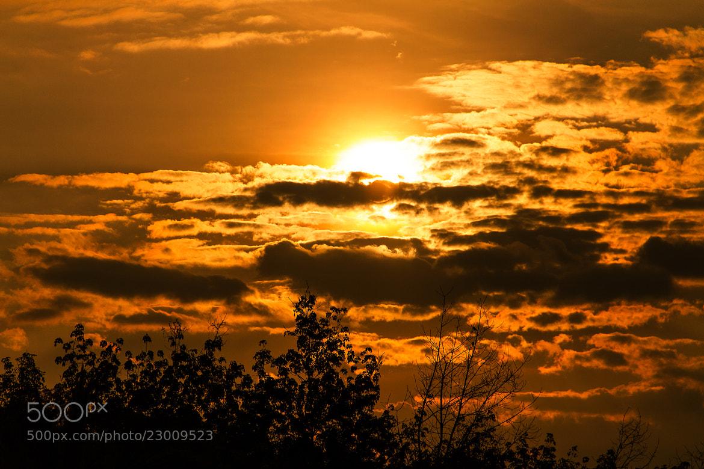 Photograph Morning by Nitchakan Changsan on 500px