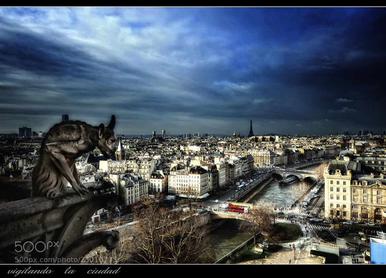 Photograph Vigilando la ciudad by Mayte Weber on 500px