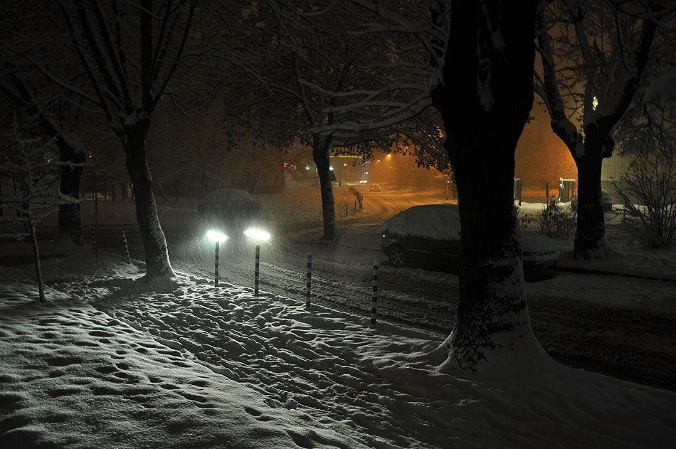 Photograph Snow blur by Petar Nakov on 500px
