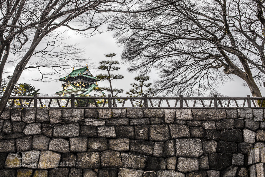Photograph Osaka Castle by Tim Grey on 500px
