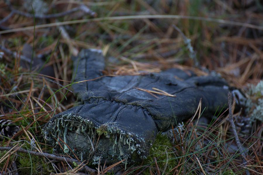 porkkala by Simo Ikävalko on 500px.com