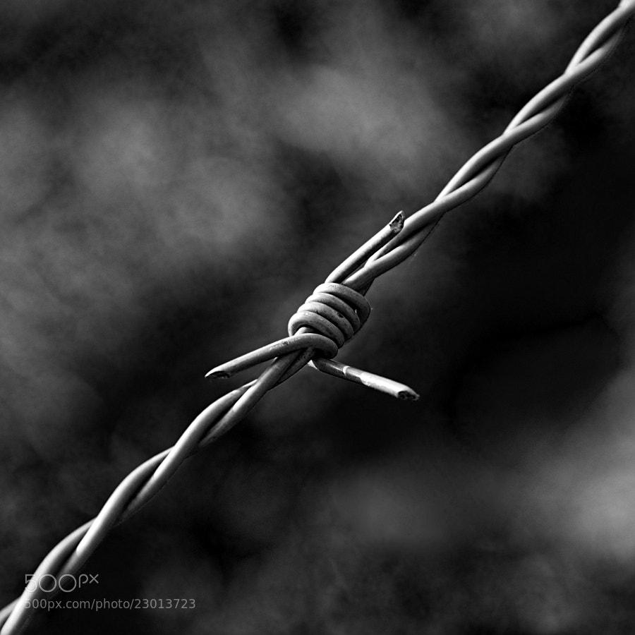 Photograph --- + --- by Tomasz Podhalański on 500px