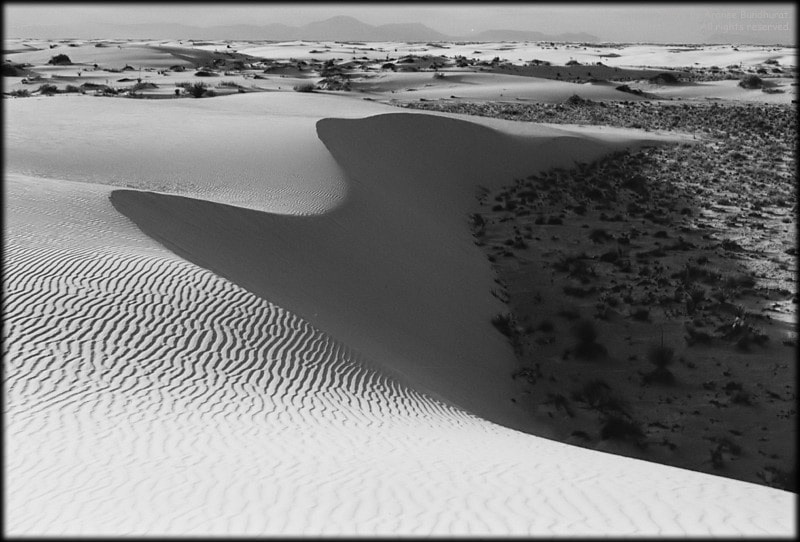 Photograph White Sands National Monument by Aranee Bundhurat on 500px