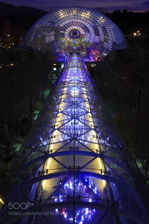 Photograph Crystal dome by Hiroshi Oka on 500px