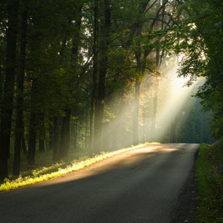 """and God said, """" I will shine on you ! """""""