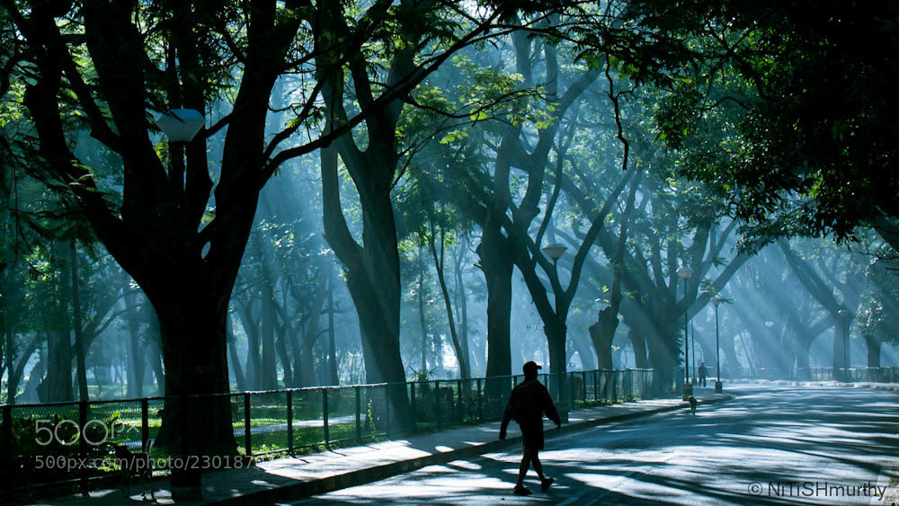 Photograph The Morning Walk by Nitish Murthy on 500px