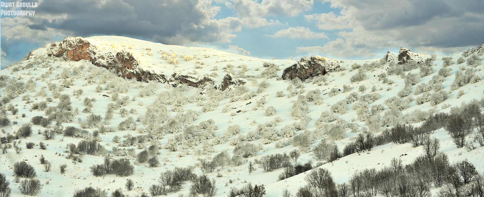 Photograph Nature SNow by Awat Abdulla on 500px