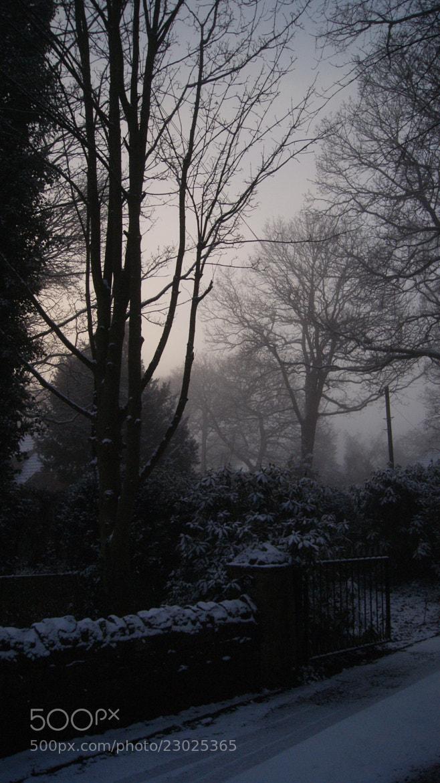 Photograph Misty Sunrise by Robin Jones on 500px
