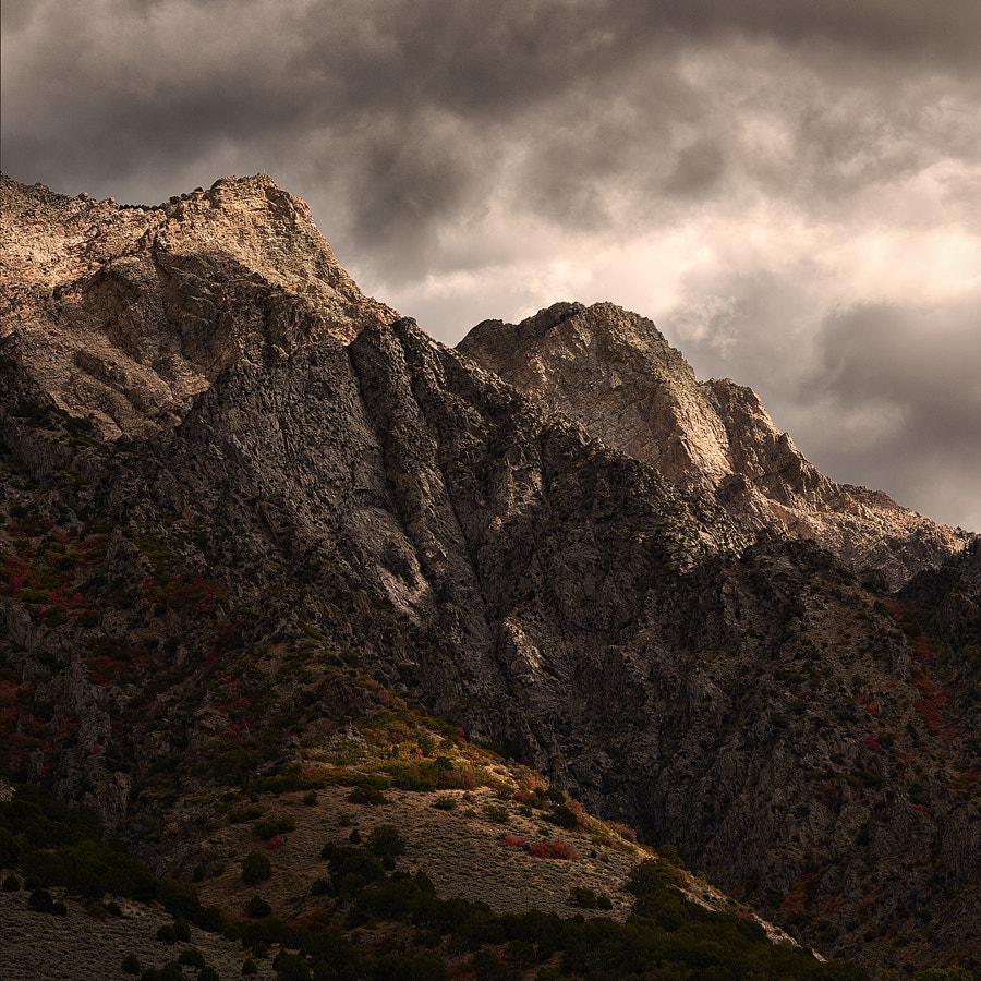 Willard Peaks