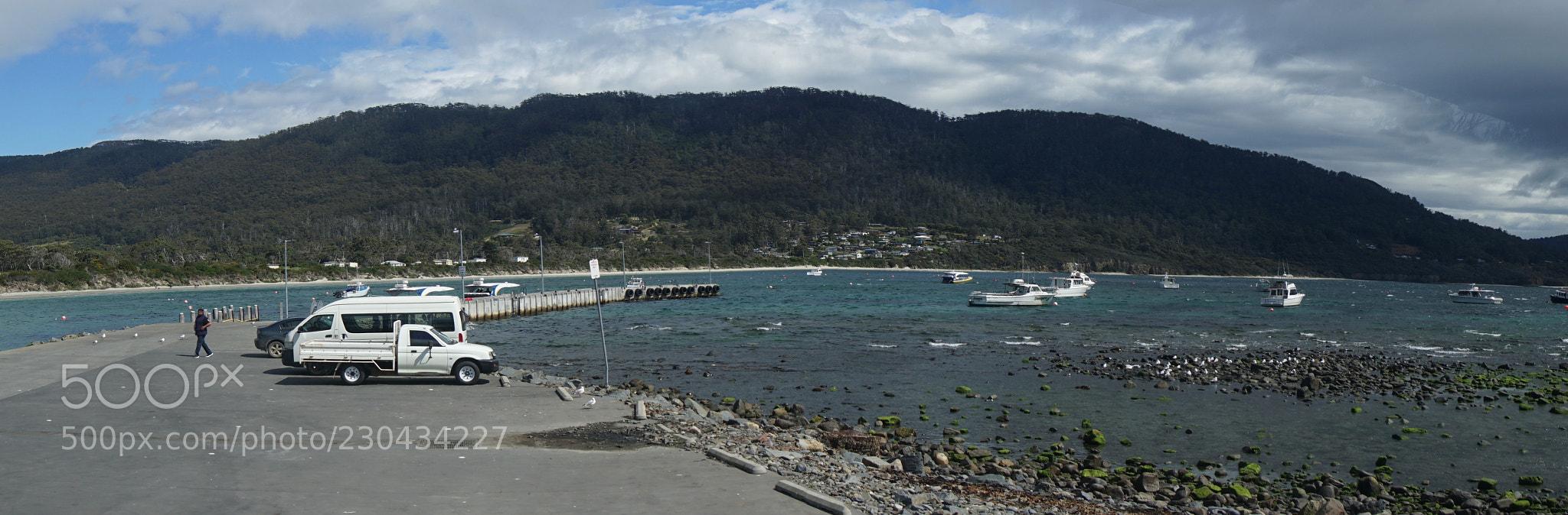 Tasman Cruise Kickoff