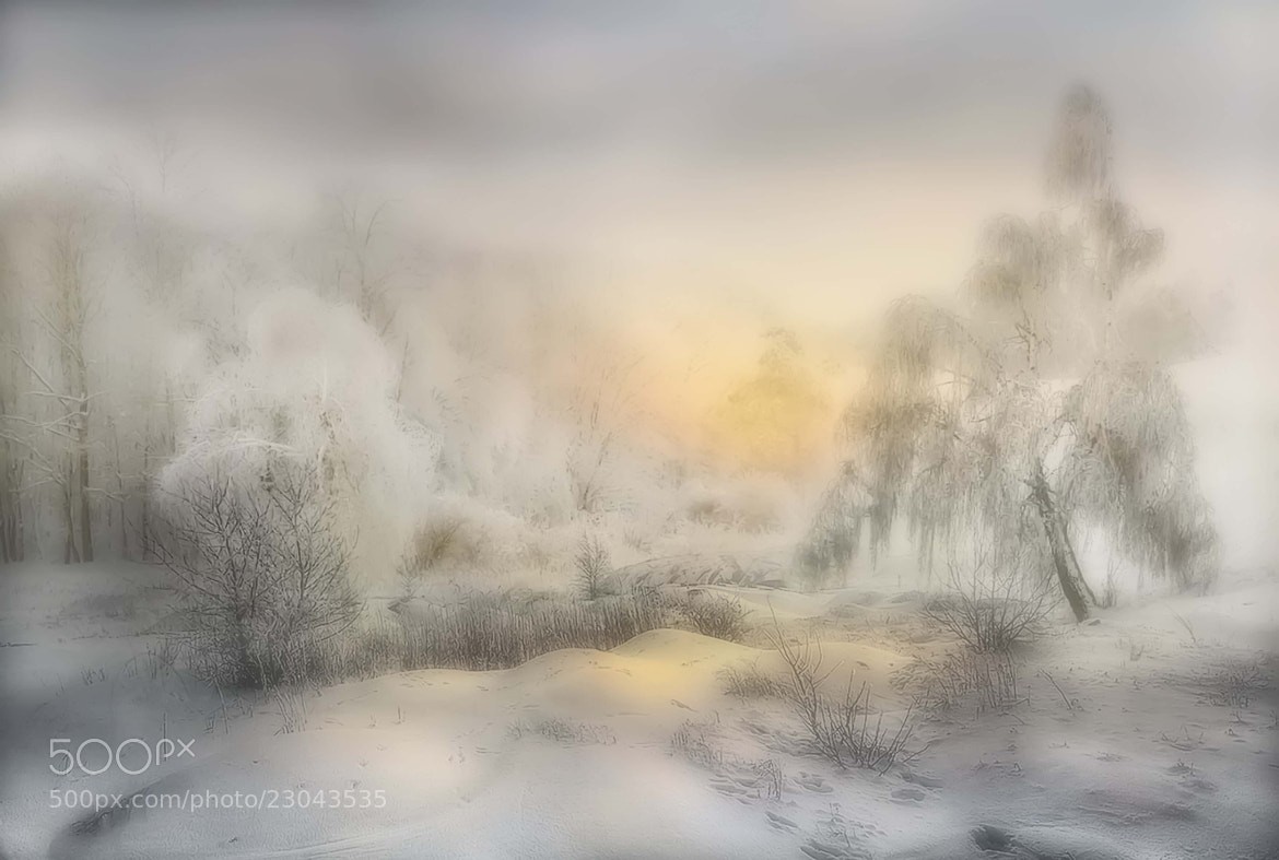 Photograph Winter Flow by Maurizio Fecchio on 500px
