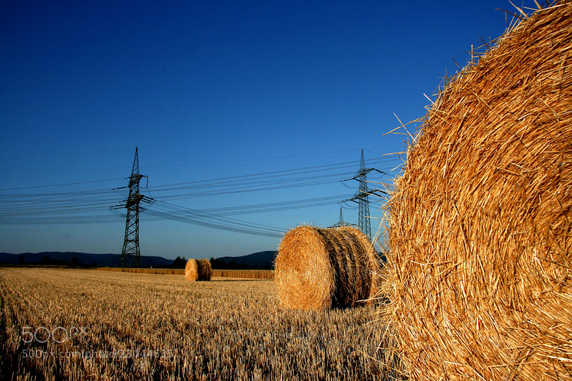 Photograph Nature and Electricity by Dietmar Pursch on 500px