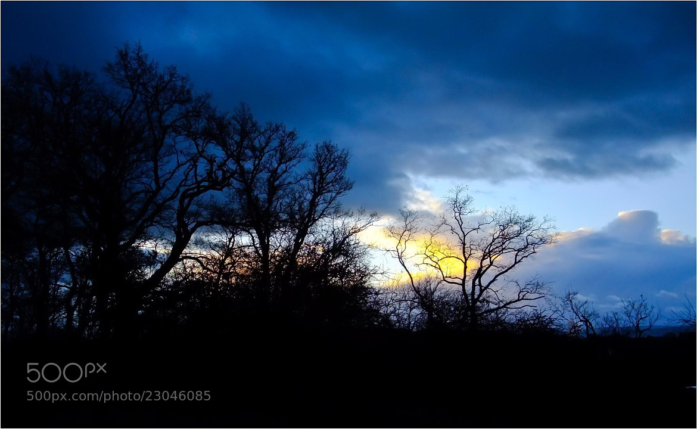 Photograph light in the darkness by Ulrich Fleischer on 500px