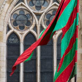 Pendón y Catedral de León