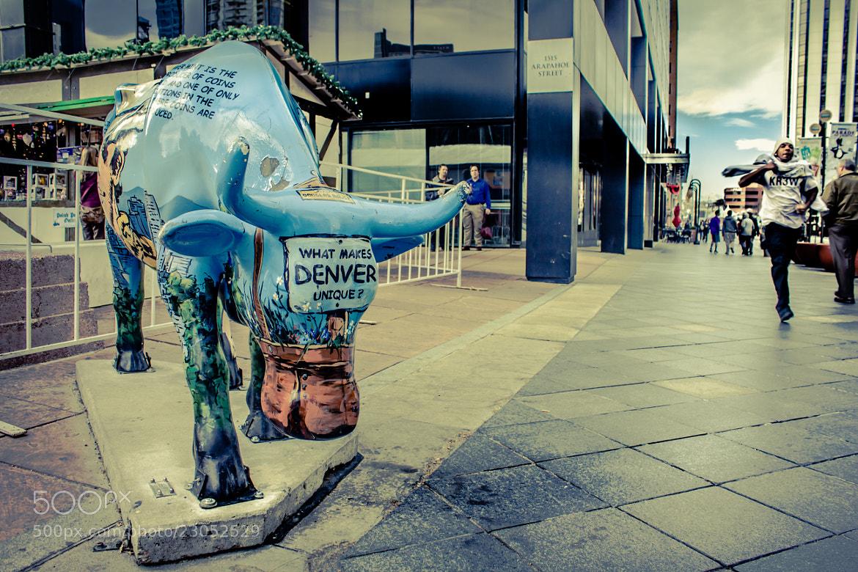 Photograph What Makes Denver Unique? by Marlon Jay Manuel on 500px