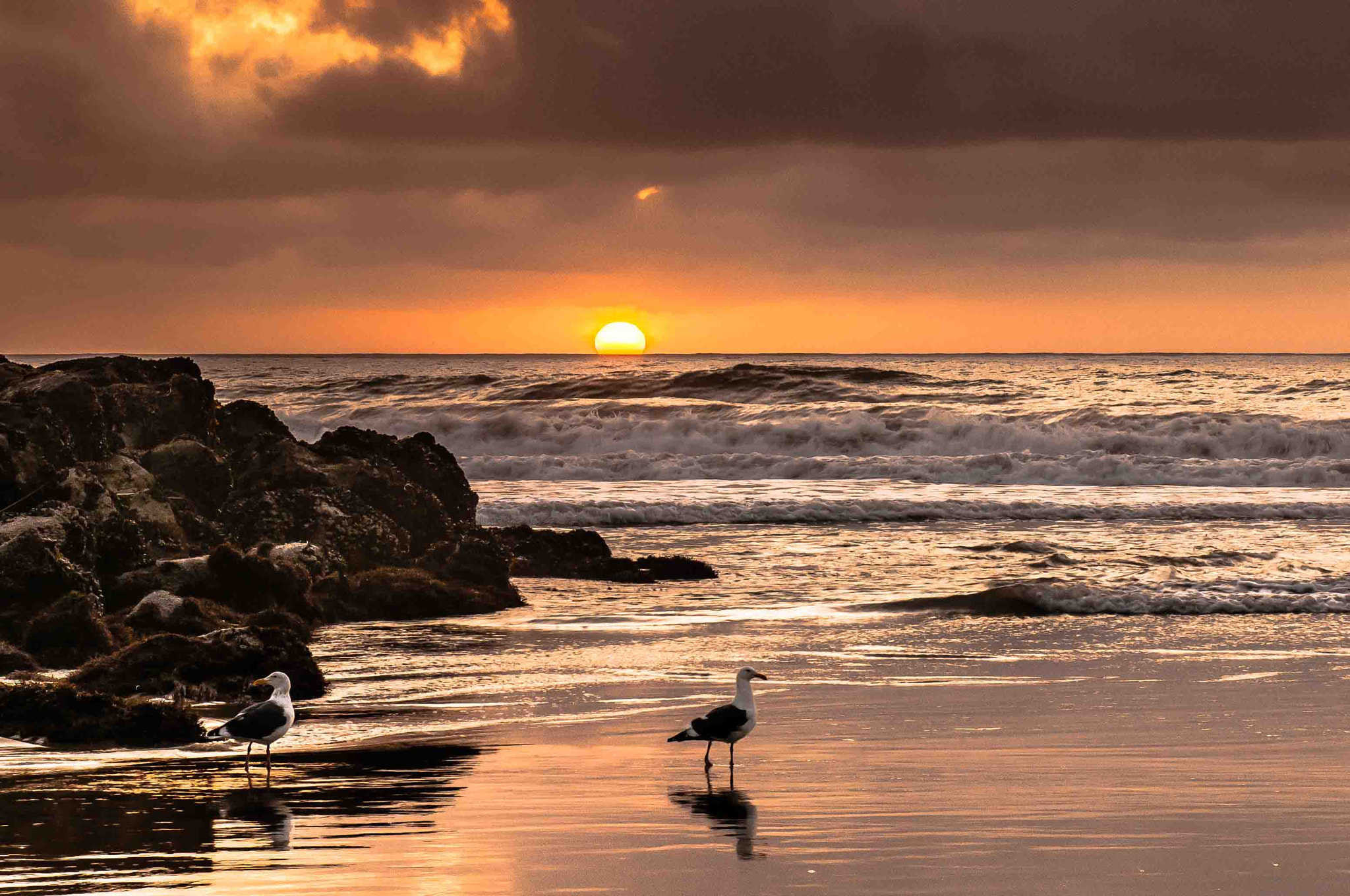 Photograph Sunset on the Beach by Ceasar Sharper on 500px
