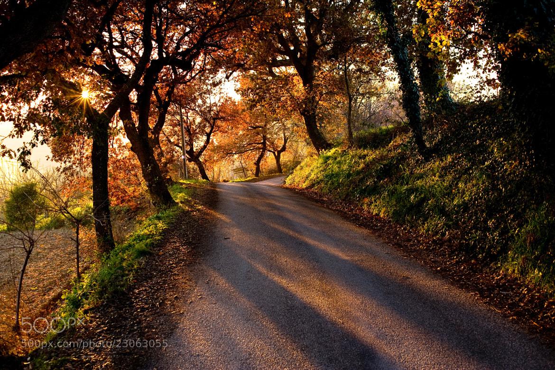 Photograph Walking on... by Antonio Cutrona on 500px