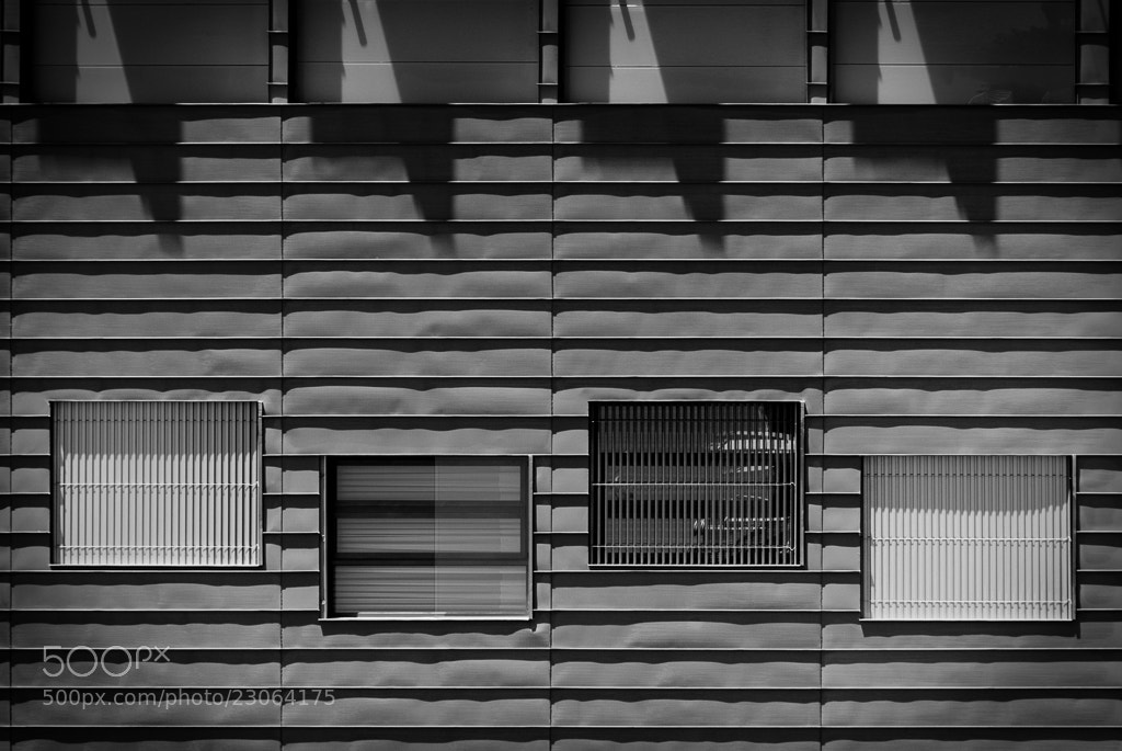 Photograph Nonalignment by Fernando Correia da Silva on 500px
