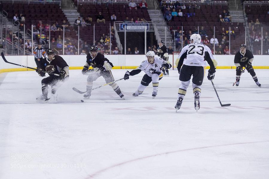 Hershey Bears vs. WBS Penguins
