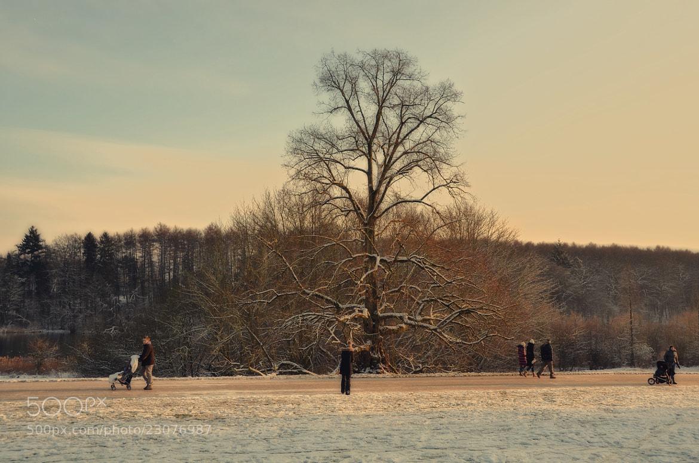 Photograph ***13.01.13*** by Matthias Locker on 500px