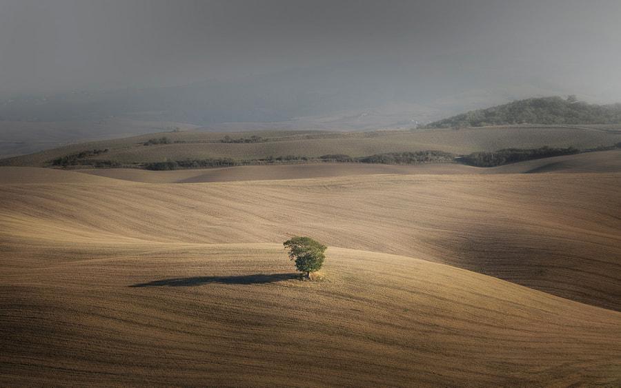 Val d'Orcia, автор — Riccardo Brandoni на 500px.com