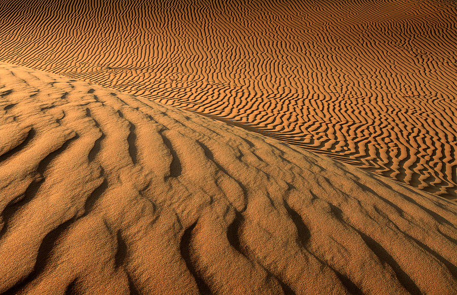 Photograph Abstracut from Desert  by Mohamed Al Jaberi on 500px