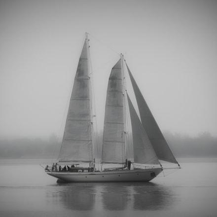 Canadian Schooner in Mist