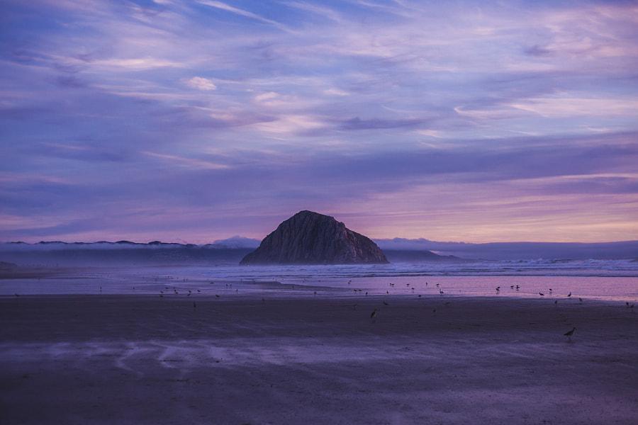 Sunset on the California Coast, автор — Matt Lief Anderson на 500px.com