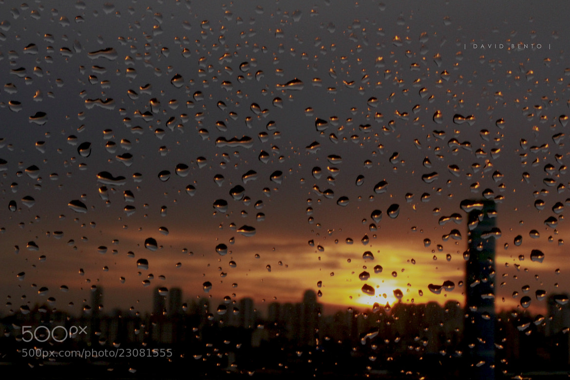 Photograph Sunset After the Rain by David Bento on 500px