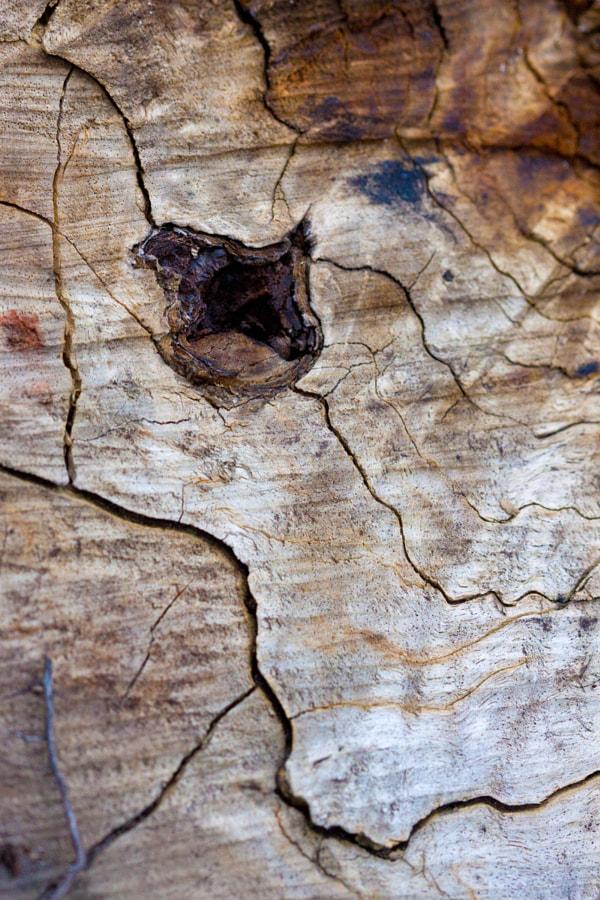 Courbes de niveau (Contour lines) de Christine Druesne sur 500px.com