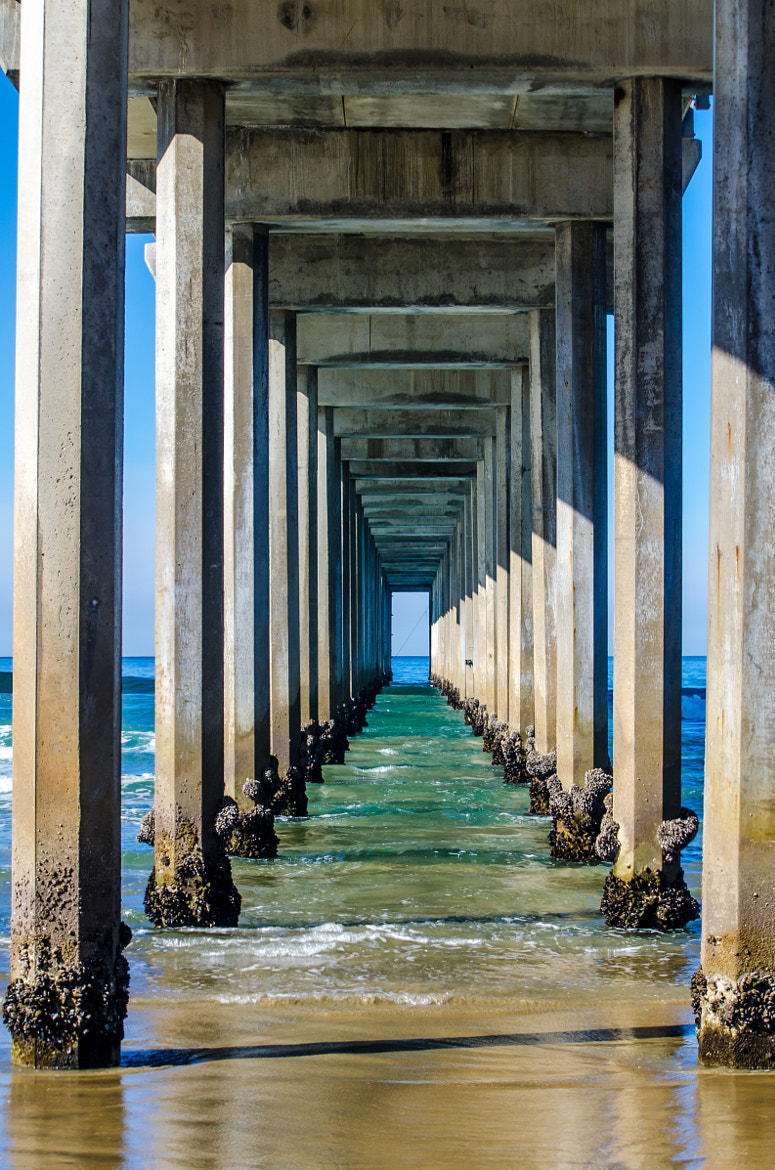 Photograph Scripps Pier by David McCurry Photography on 500px