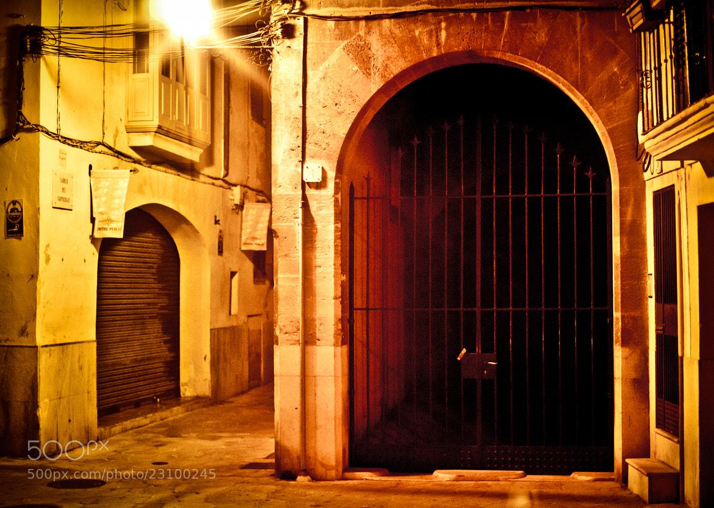 Photograph Night in Palma de Mallorca 1 by Vladimir Senchikhin on 500px
