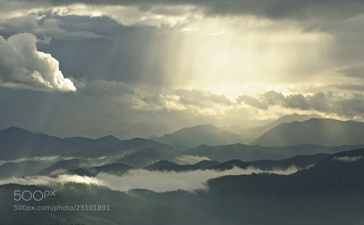 Photograph Natural by Saghani  on 500px