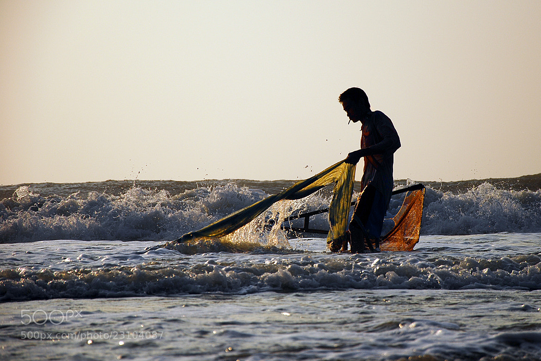 Photograph Bám biển . by Thachhan on 500px