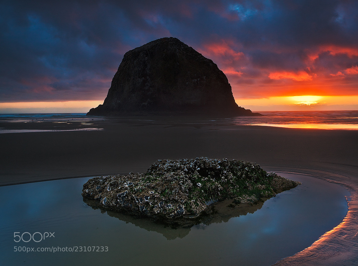 Photograph Days End - Cannon Beach by Dee Nichols on 500px
