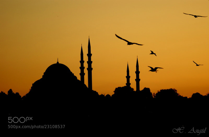 Photograph Süleymaniye by Haydar AŞIGÜL on 500px