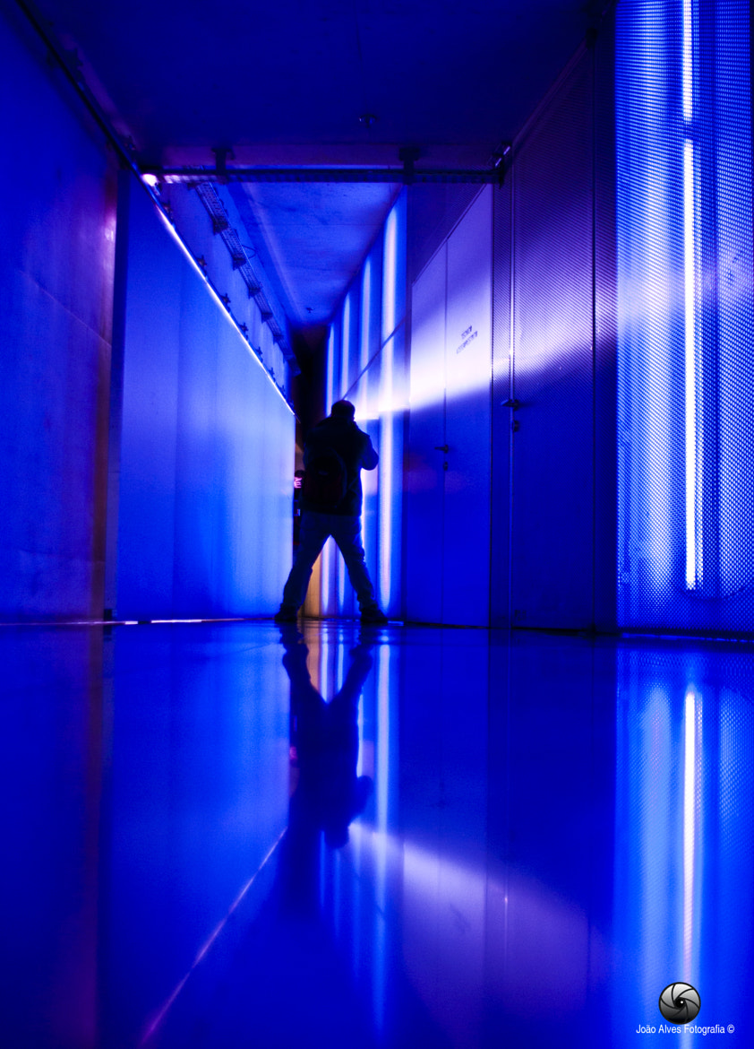 Photograph In Blue Light by Joao Alves on 500px