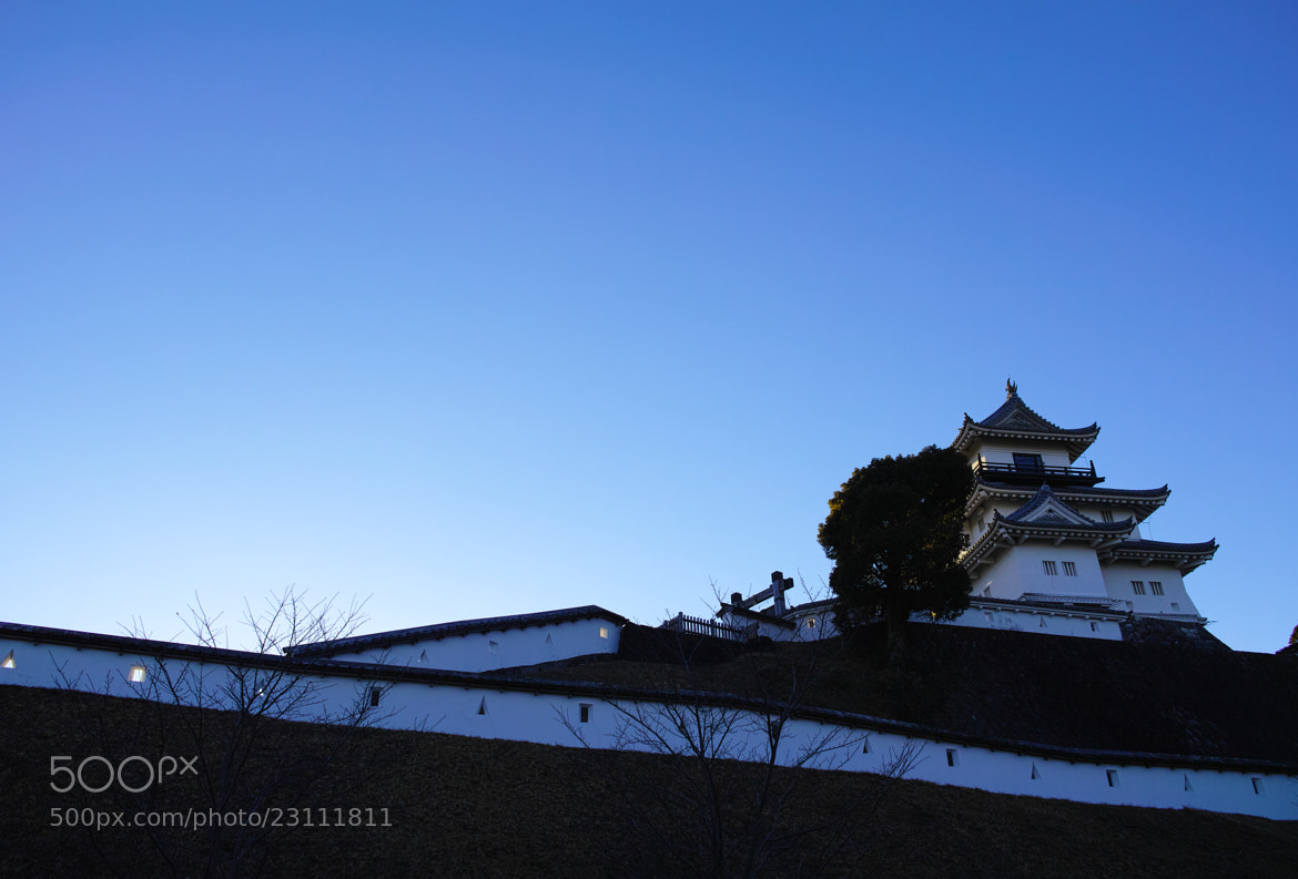 Photograph A Japanese Castle by kimito_k  on 500px
