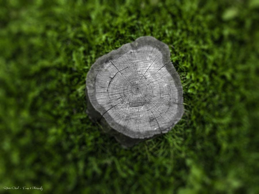 Solo mezza vita de Roberto Cabral │Image & Photography en 500px.com
