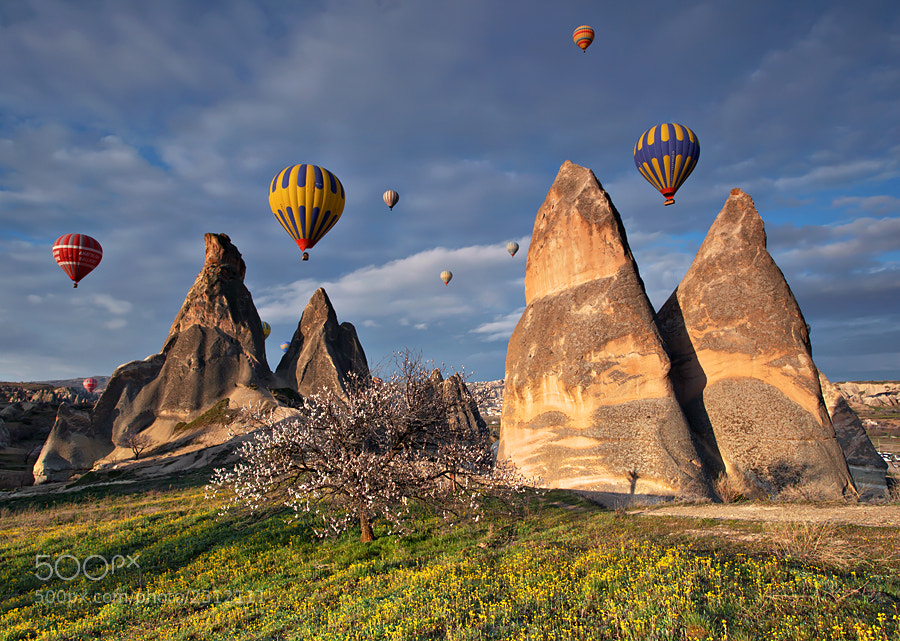 Photograph Spring in Cappadocia by kani polat on 500px
