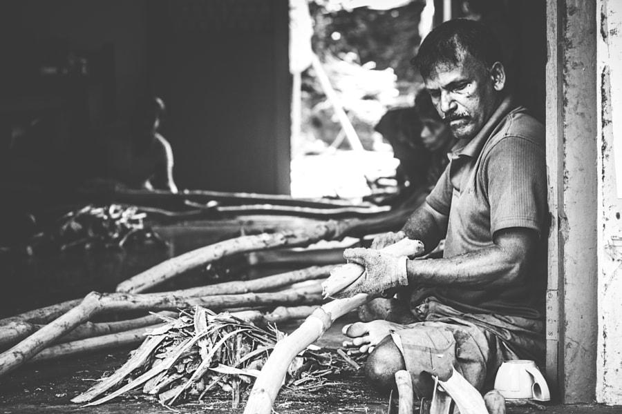 Cinnamon Peelers, Sri Lanka #3 by Son of the Morning Light on 500px.com