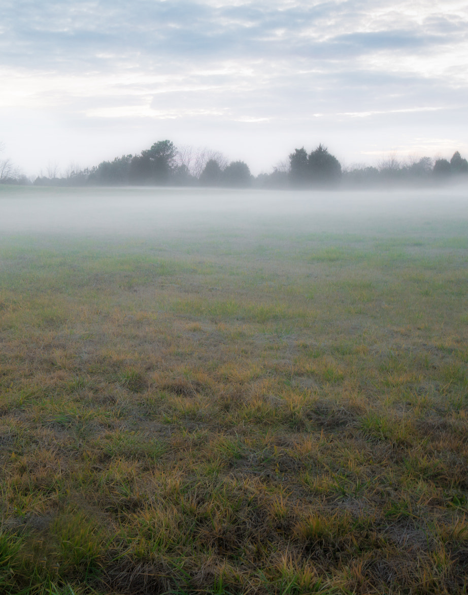 Photograph Misty Green Field by Greg Padgett on 500px
