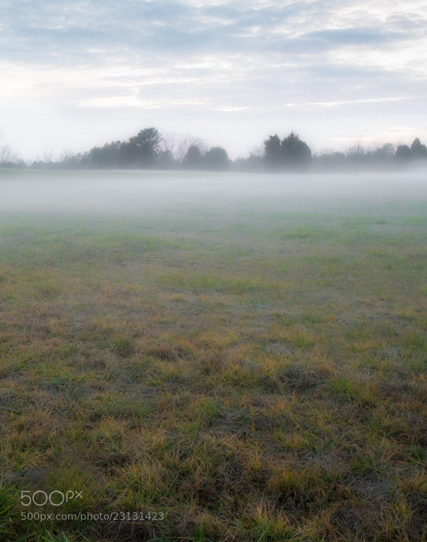 Photograph Misty Green Field by Greg Padgett on 500px
