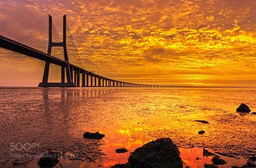 Photograph Vasco da Gama bridge by joao esteves on 500px