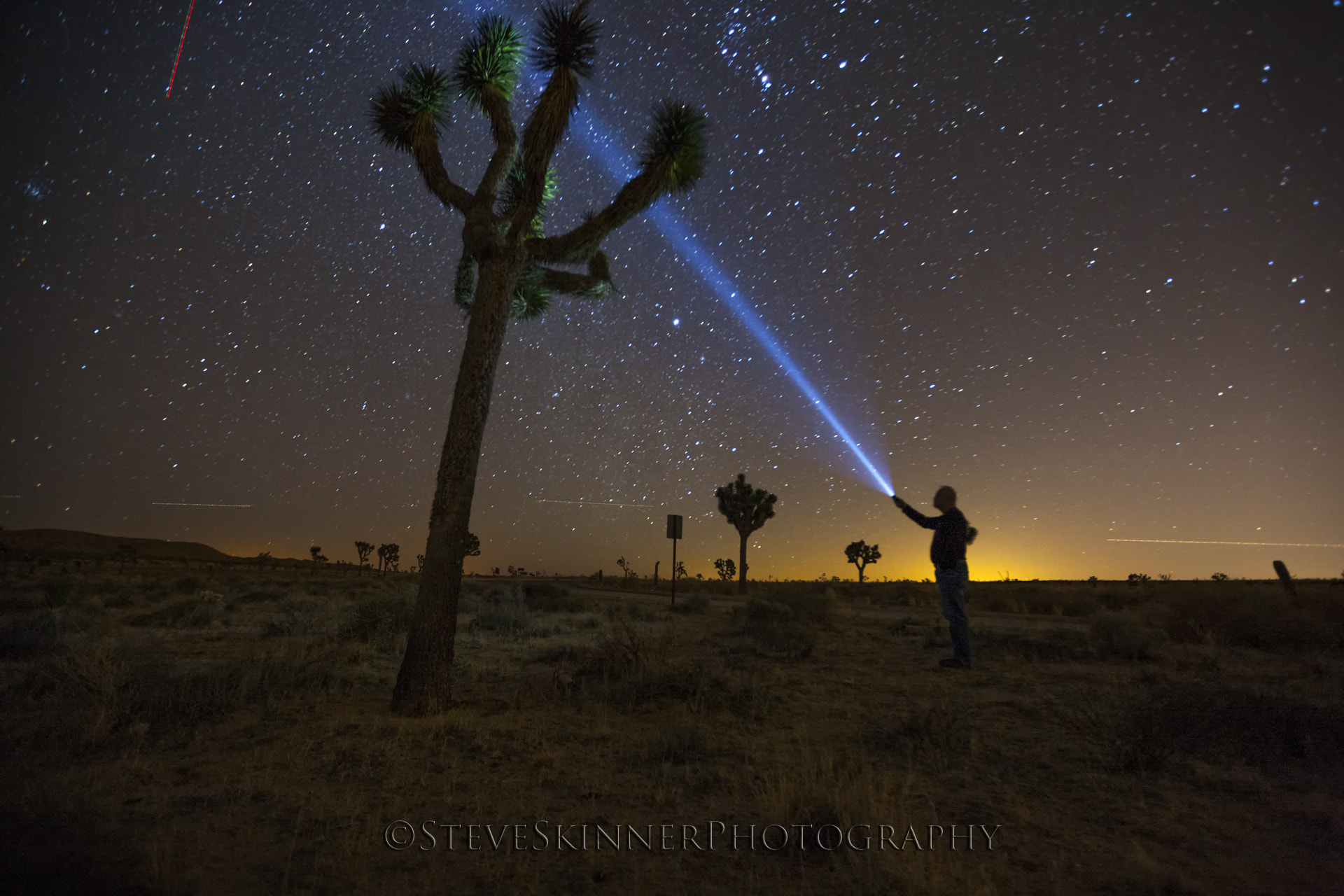 Photograph Stars and Rays - Joshua Tree by Steve Skinner on 500px
