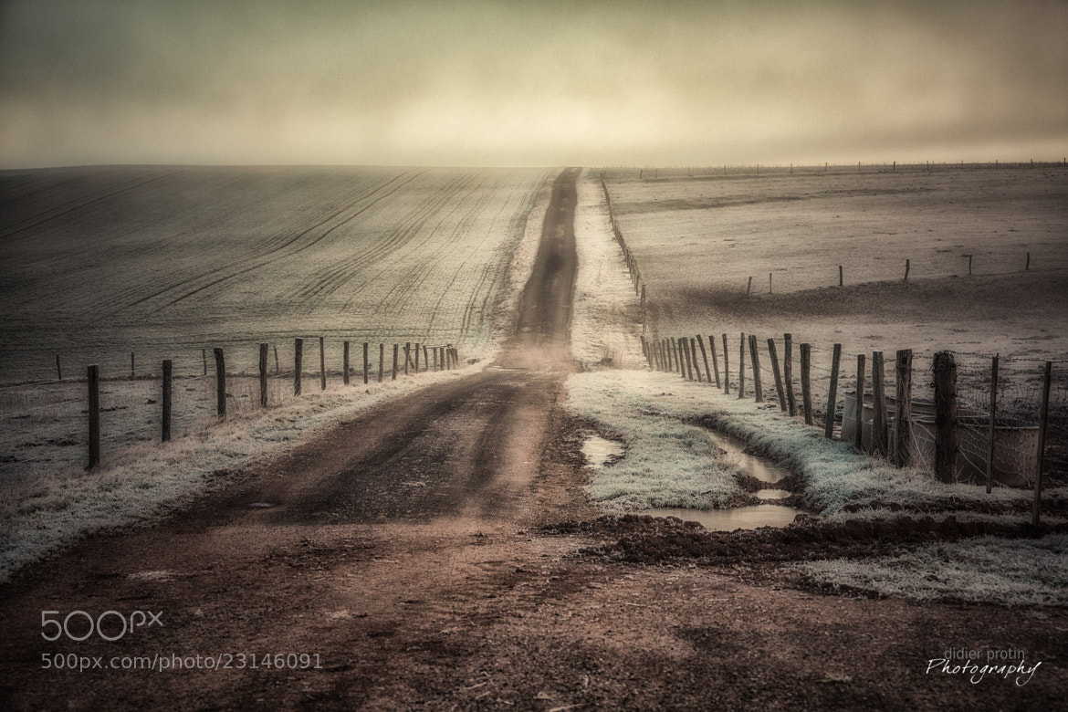 Photograph The way to nowhere by Didier Protin on 500px