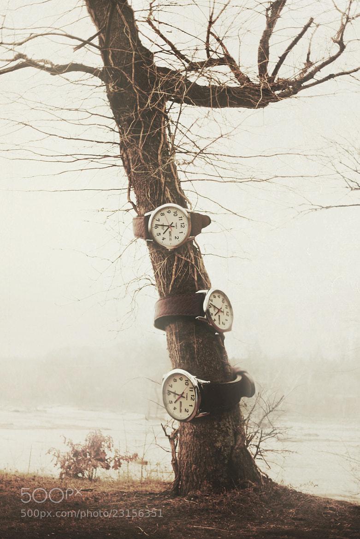 Photograph Time  by Nicholas Scarpinato on 500px