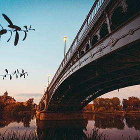 #salamanca #puente #enriqueestevan #puenteenriqueestevan #catedral #catedralsalamanca...