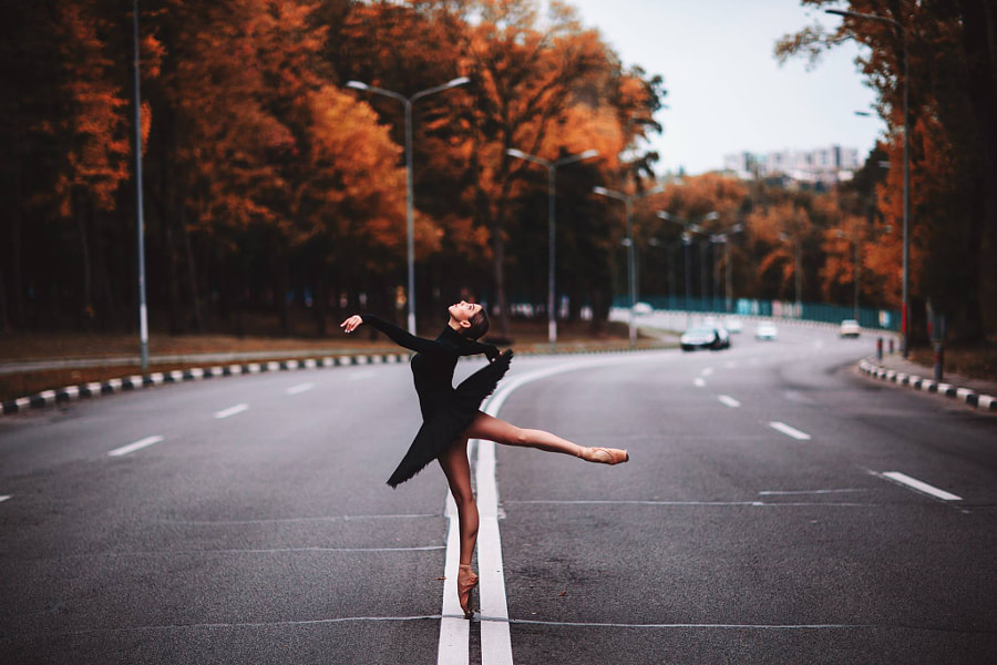 Black swan by Sergey Bondarev